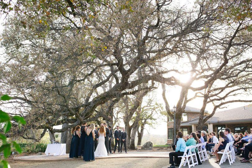 Sunny Oak Tree Ceremony