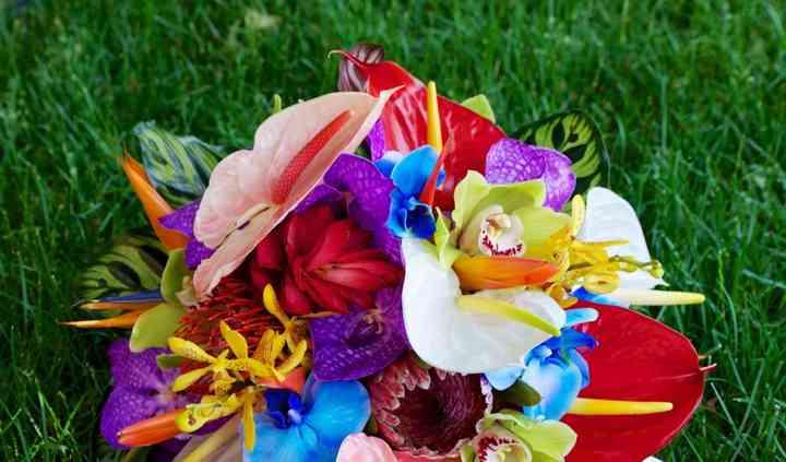 AMK Floral