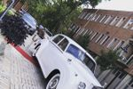 Expo Limousine image