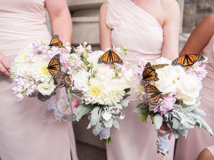 Tmx 1453473191142 Nas6607 Wilkes Barre, PA wedding photography