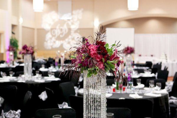 Tmx 1327693168973 Vic7 San Jose wedding rental