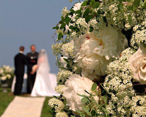 Tmx 1269377757958 043 Lutz wedding photography