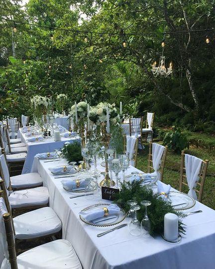Outdoor reception table setup