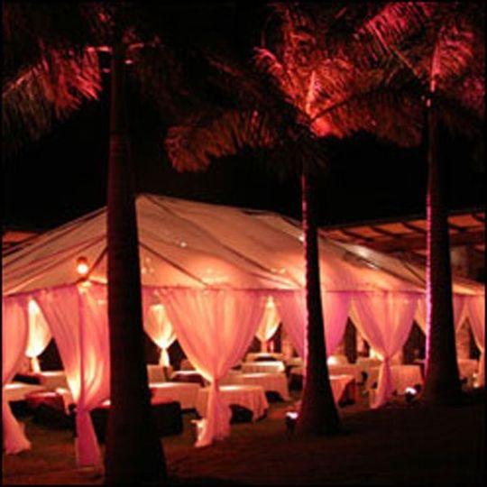 Eco Chic World Weddings 888 487 5543..