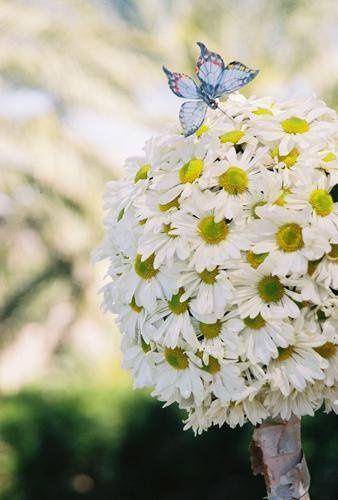 White Poppy Floral Design - Flowers - Phoenix, AZ - WeddingWire