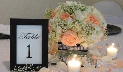 D28 Weddings