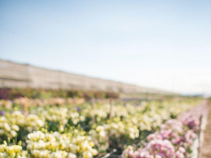 Tmx 1486446429361 Katiee B 39 Paterson wedding florist