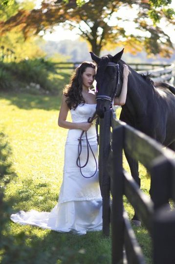 Bride and the horse