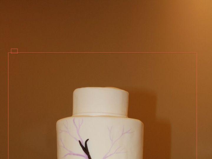 Tmx 1359494261881 Paintedbranches Westport wedding cake