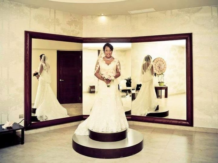 Tmx 1444252528343 Andi Davenport wedding dress