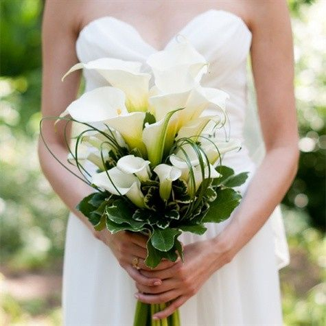 Tmx 1456936175341 Image475x475 Mount Vernon wedding florist