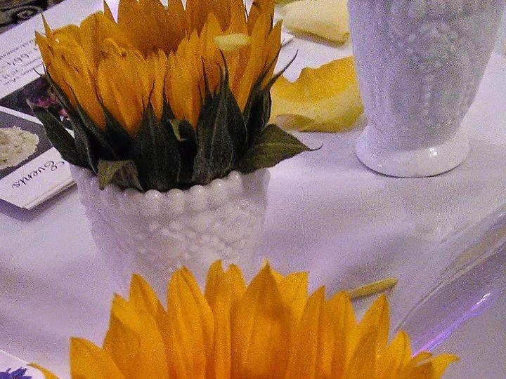 Tmx 1469452639263 Img0040 Mount Vernon wedding florist
