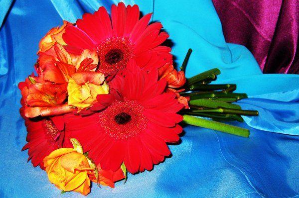 Tmx 1255013308804 IMG0367 Rowlett wedding florist