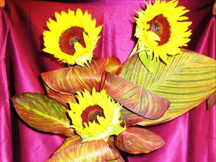 Tmx 1255013356820 IMG0354 Rowlett wedding florist