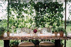 Dandelion Lane Weddings and Events