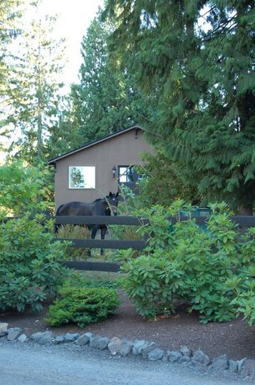 Horse drawn carriage delivers you to the front door or lawn where your groom awaits. The horse is...