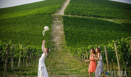 Wedding Planner in Italy ( Langhe, Lake District , Liguria )