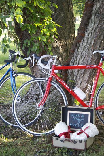 Bicycle wedding picnic