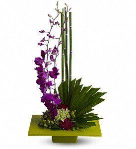 Tmx 1343163182479 HW0372743 Warwick wedding florist