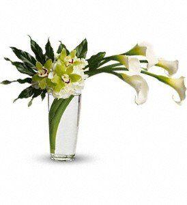 Tmx 1343163182989 HW0372746 Warwick wedding florist
