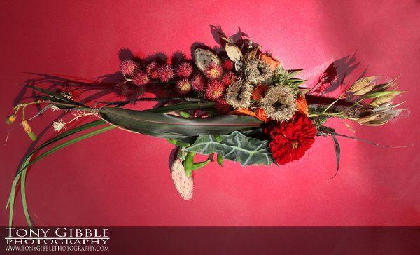 Tmx 1283521005590 WEBSDFlowers02 Mountville, PA wedding florist