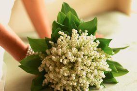 Nancy Saam Flowers