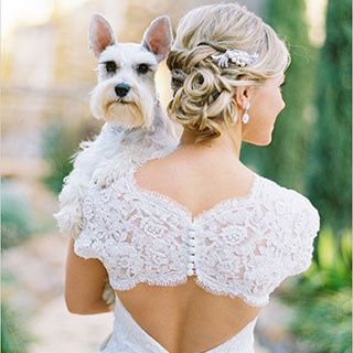 Tmx 1466015582283 Dog Middletown wedding officiant