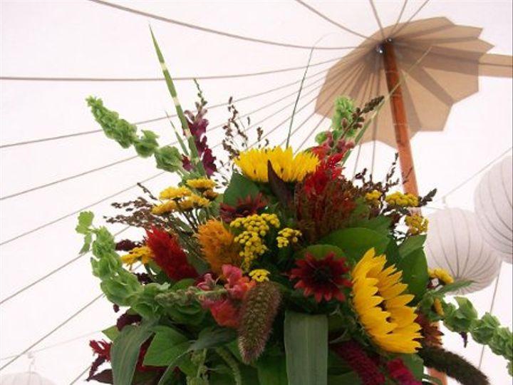 Tmx 1253625171895 1010075 Buxton wedding florist