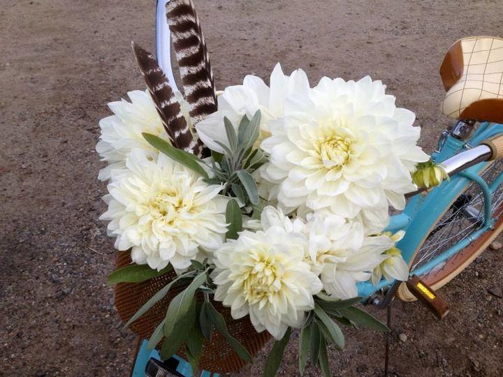 Tmx 1529384486 6d9add18142f428f 1529384485 C825610eba1c08fa 1529384482918 6 6 Buxton wedding florist