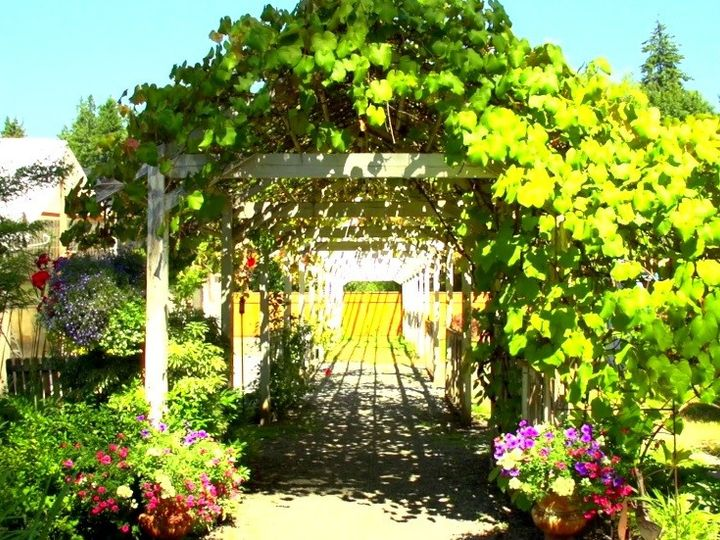 Tmx 1441086092883 Arborflowers Black Diamond, Washington wedding venue