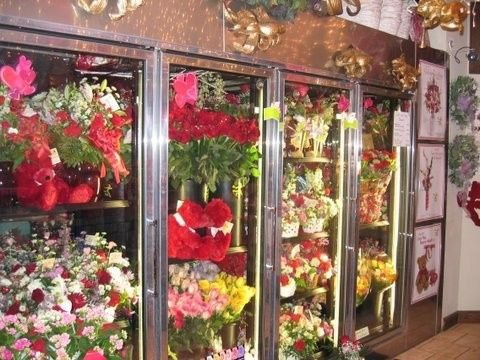 Tmx 1390515648979 Store Hopewell Junction wedding florist