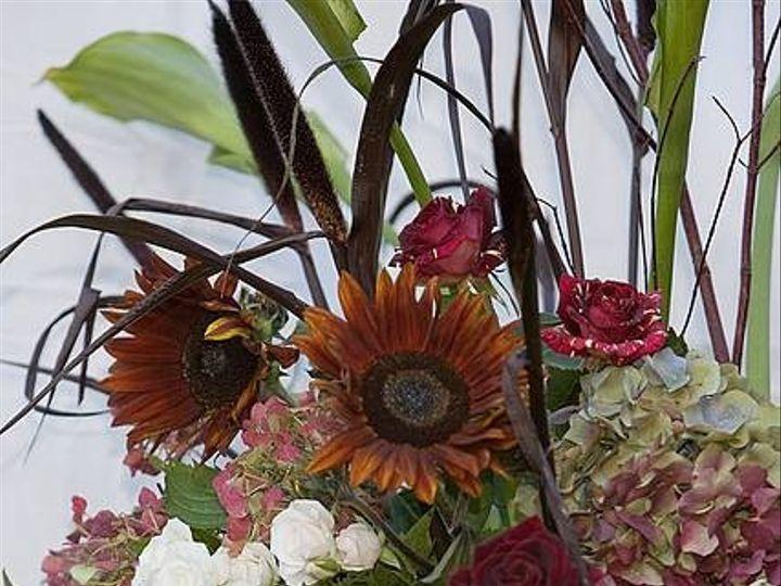 Tmx 1374455117175 345alp1530 Annapolis wedding florist