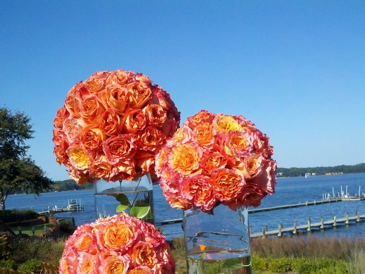 Tmx 1374455909023 2011 10 0815 54 51238 Annapolis wedding florist