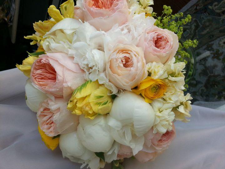 Tmx 1375206879642 20130503151255 Annapolis wedding florist