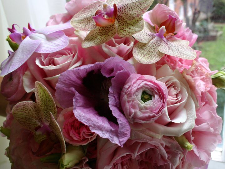 Tmx 1375207198343 Img4608 Annapolis wedding florist