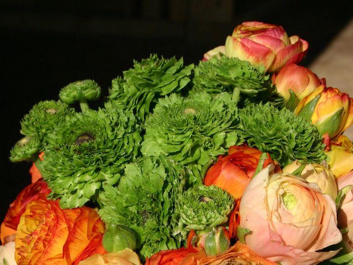 Tmx 1375207367206 Img4011 Annapolis wedding florist