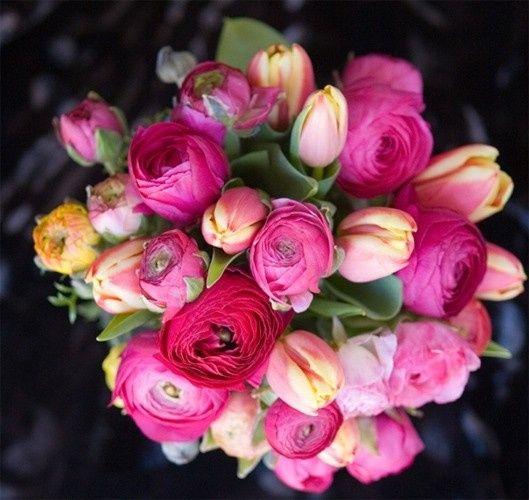 Tmx 1375207527352 F75 Annapolis wedding florist