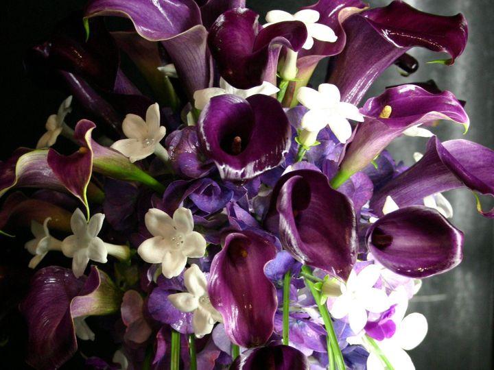 Tmx 1375314341815 Img4630 Annapolis wedding florist