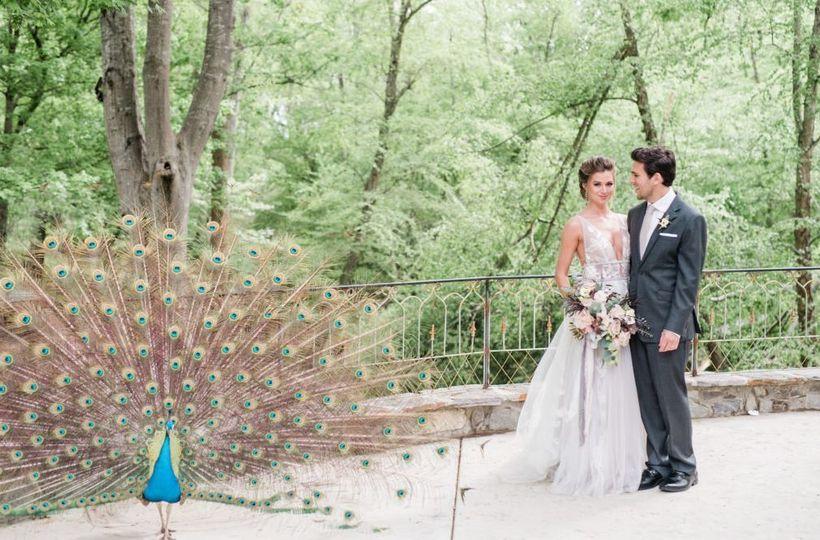 Couple next to a peacock