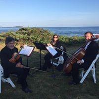 Flute, Violin & Cello Trio