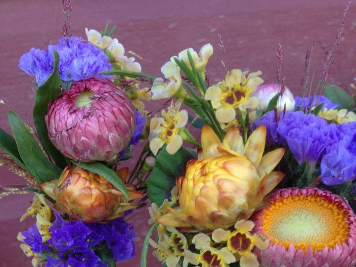 Tmx 1384836150344 Img081 Bristol, VT wedding florist