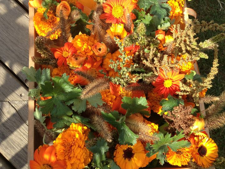 Tmx 1387389748073 Img082 Bristol, VT wedding florist