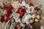 Jessica Vann-Campbell Flowers image