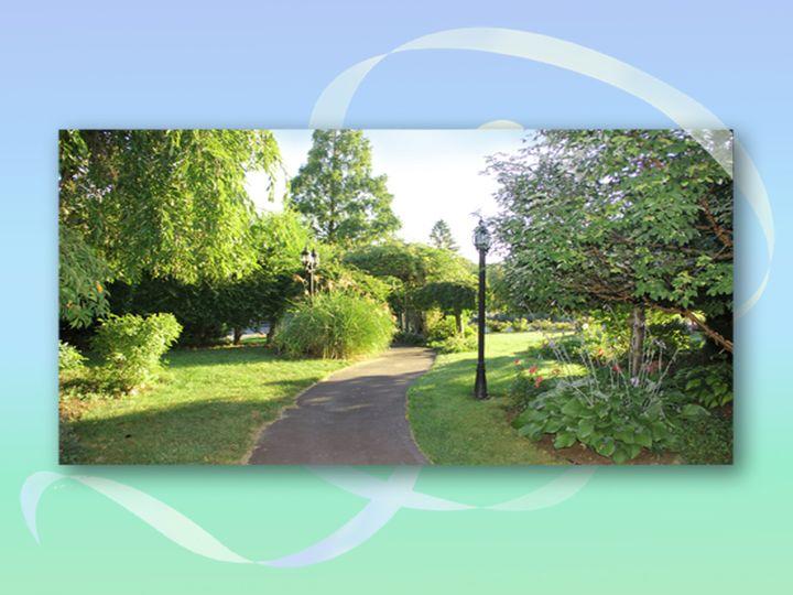 webster presentation gardens 2