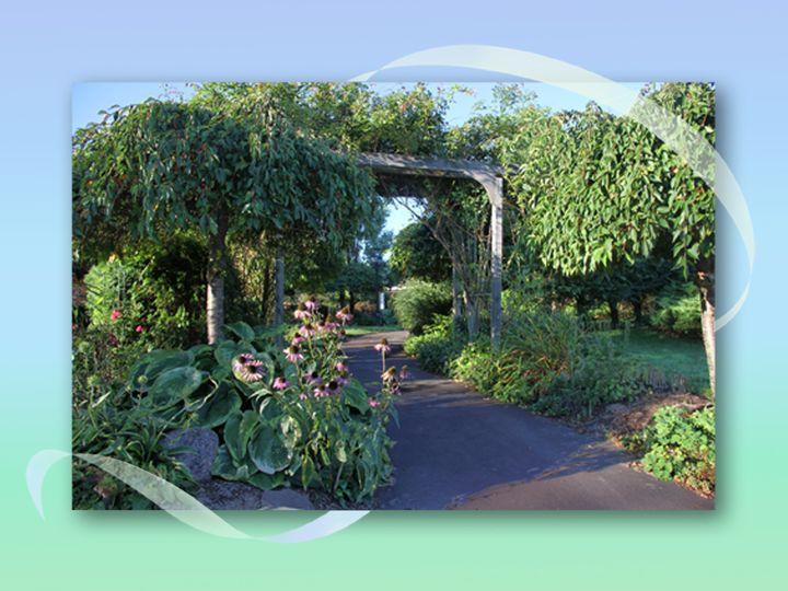 webster presentation gardens 6
