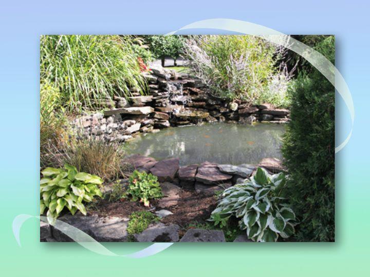 webster presentation gardens 7