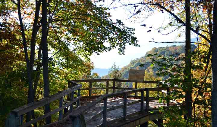 Roan Mountain State Park