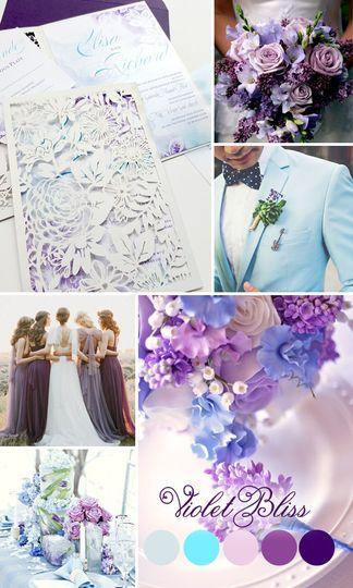 seville violette bliss