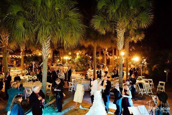 Jacksonville zoo and gardens venue jacksonville fl weddingwire 800x800 1309893183901 peacockbouquet 800x800 1460046283418 defoor kane jacksonville wedding 0450blog junglespirit Gallery