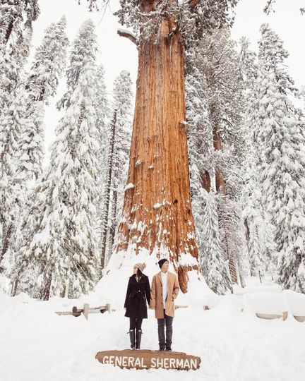 california top 33 epic engagement photography locations sequoia national park 003 khoa photography 51 969052 1572545299